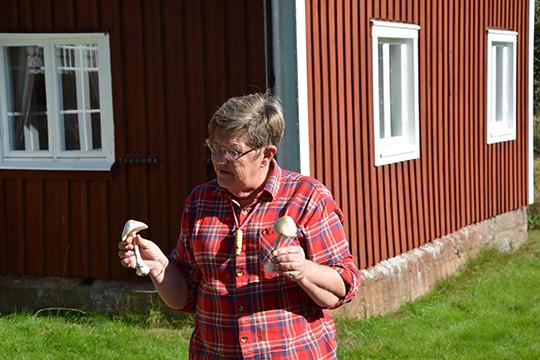 aria Bäckman berättar hur man känner igen en vit flugsvamp. Bild: Elin Johansson